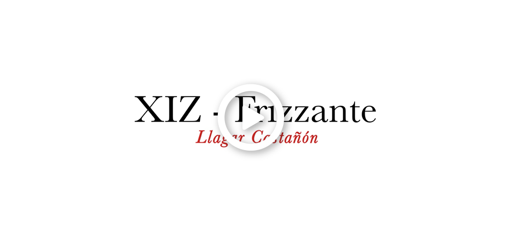 xizz_frizzante_castanon_video